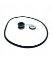 Mechanical seal DAB Euroswim 150-200-300