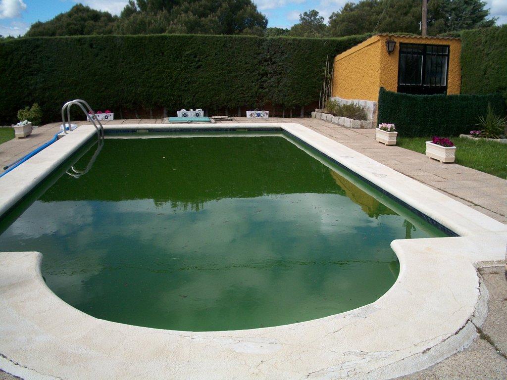 Color verde en agua de piscina - Agua de piscina verde ...