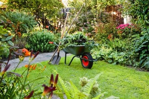 La puesta a punto del jardín