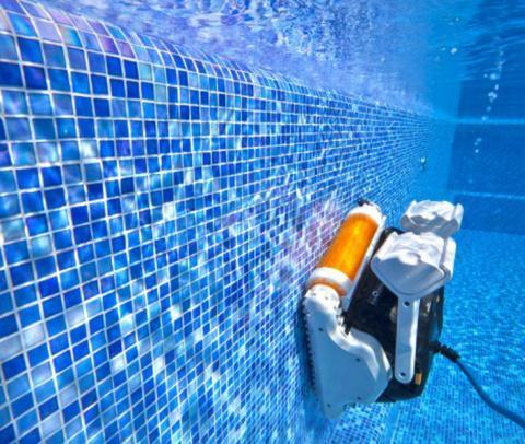 Comparativa Limpiafondos residenciales Dolphin