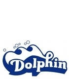 Pool Cleaners Dolphin